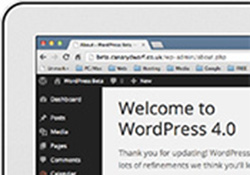 WortdPress interface